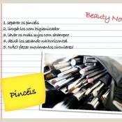 Limpando e Higienizando Pincéis