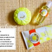 Especial Verão | Perfumes