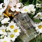 Marc Jacobs | Daisy Eau so Fresh
